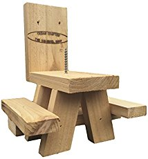 Picnic Table Squirrel Feeder review