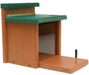Woodlink Going Green Squirrel Munch Box Model GGSQBOX review